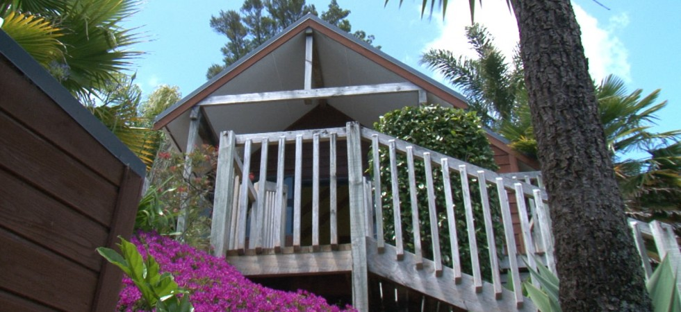 Accommodation Paihia – Bay Cabinz Motel
