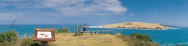 Hokianga-Sand-Dunes-view-from-lookout-Mckenzies-cottage-accommodation-omapere